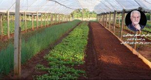 معرفی 10 ایده های کشاورزی